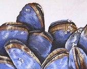 Seashell Textured Painting - Mussels II - Original Mixed Media String Work - Blue