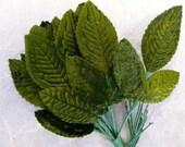 Vintage  Green Velvet Rose Leaves Small  (6)