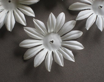White Daisy Flower  Petals  (36)