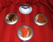 Lighted Compact Mirrors - Vintage Cameos II