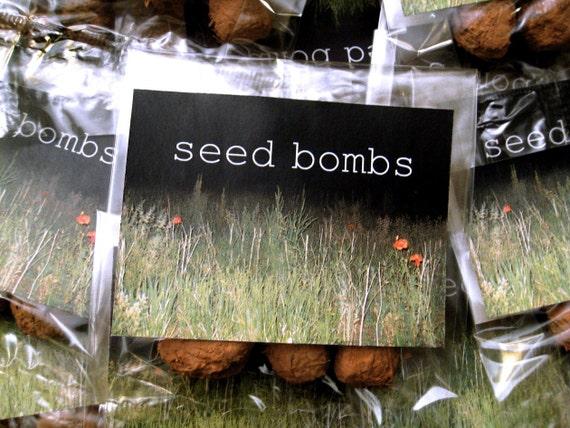 Sunflower Seed Bombs