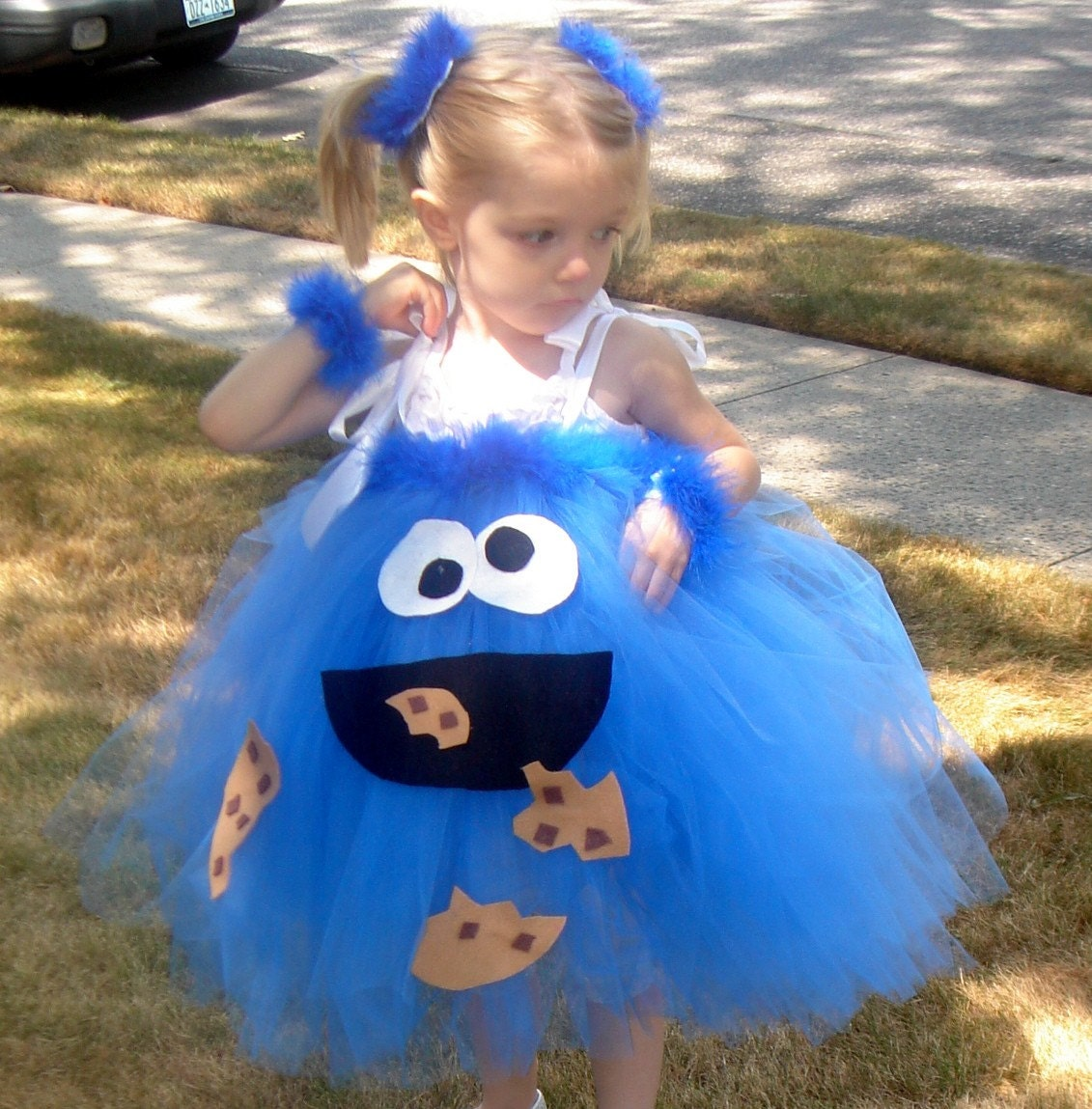 Cute Cookie Monster Halloween Costume