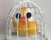 Yellow Owl in White Cage