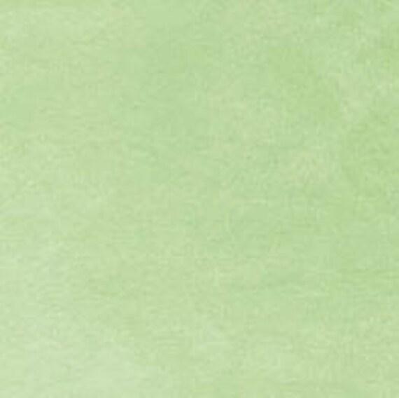 Minky Minkee Chenille Fabric Light Pastel Sage Green