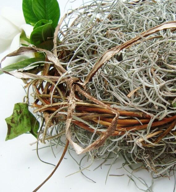 Ring Bearer Pillow Moss Love Nest  Natural Honeysuckle