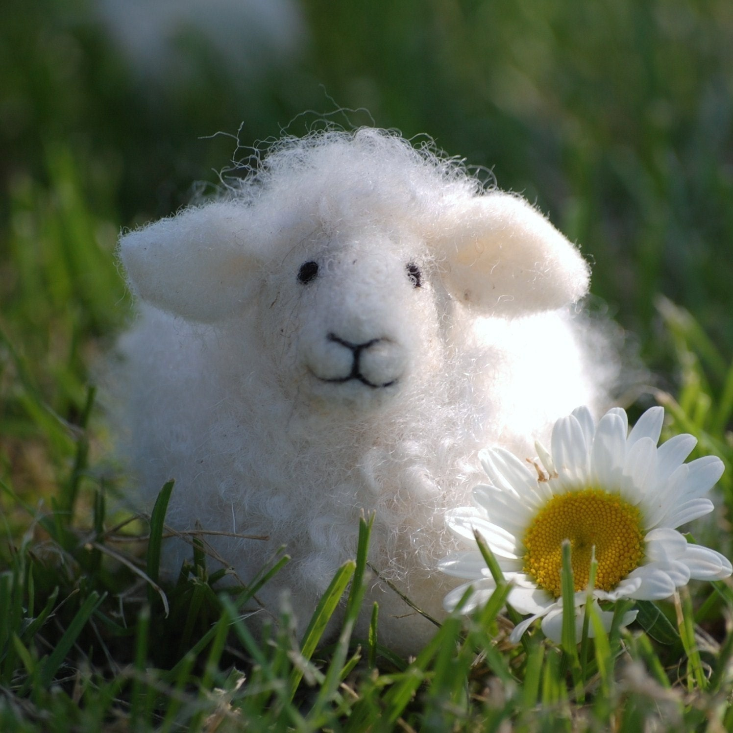 Felt sheep 99