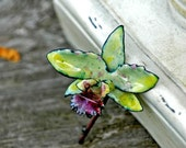 Pale Green Cattleya Orchid Hybrid - Enameled Pin