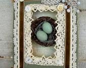 Vintage Shadowbox Hanging Book and Bird's Nest