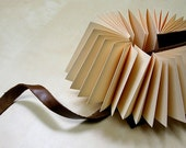 Leatherbound accordion play book.