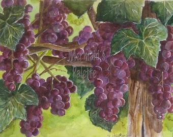"""watercolor """"Vineyard"""" watercolor art print -grapevines"""