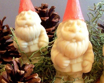 Gnome Soap Handmade Oatmeal Soap Scented with Cinnamon