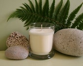 All Natural Eco Friendly Soy Spruce and Eucalyptus 12 oz. Candle