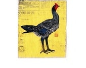 Blue Shamo hen card