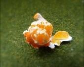 Miniature peeled satsuma 12th scale