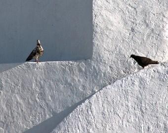 Geometry of Light, 8x8 fine art print, travel mediterranean photography, shabby chic home decor