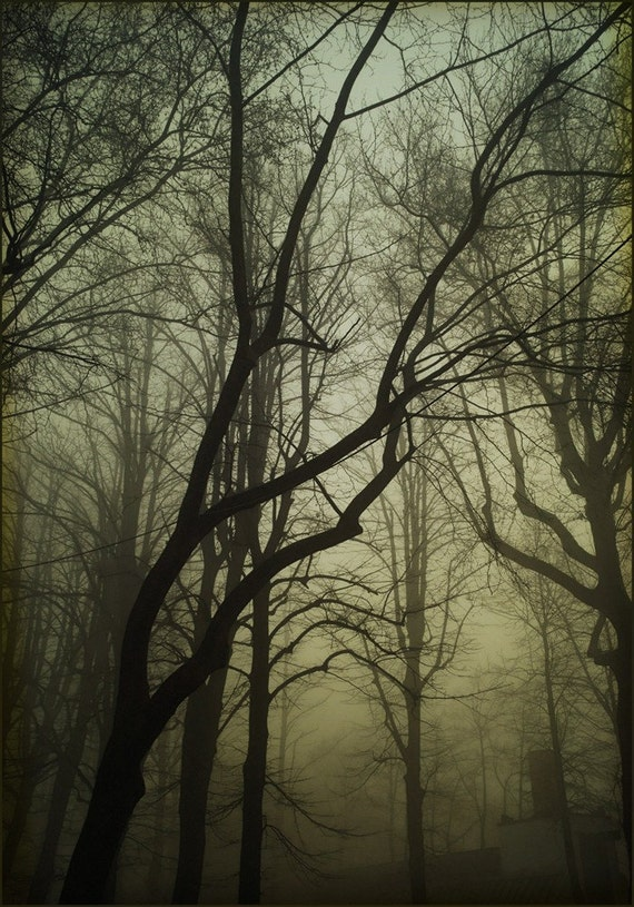 The evening was lonely, 8x11 inches original fine art photograph