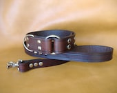 Custom Made Roman Ring 1.5 inch width Collar and 1 inch width up to 4ft Leash with Choice of 16 Colors, Add a Name or Gems