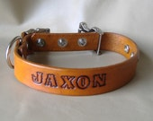 Custom Name 1 inch width Leather Collar with Quick Release Buckle, Adjustable, Choice of 16 Colors and Letters
