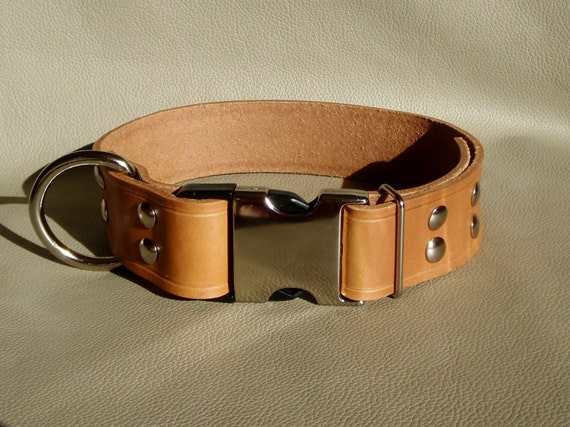 Custom 1.5 inch width Leather Collar with Quick Release Buckle it is Adjustable using Chicago Screws, Choice of 16 Colors