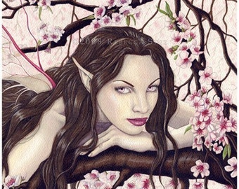 Fairy of the Spring Bloom 8.5 x 8.5 inch Print
