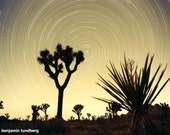 Reserved Listing - 11 x 14 - Photograph - Joshua Tree National Park, California