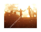 I Want To Watch It Come Down (NIN), 8x10 Photography Print - FREE SHIPPING