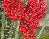 By Their Fruit, Fine Art Photograph Note Card