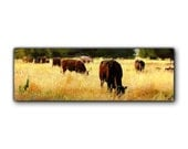 Original Mixed Media Painting: A Heard of Cattle 6x18