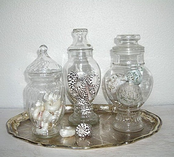 apothecary jars - set of three - instant collection