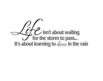 Life isn't about waiting for the storm to pass...It's about learning to dance in the rain....vinyl lettering