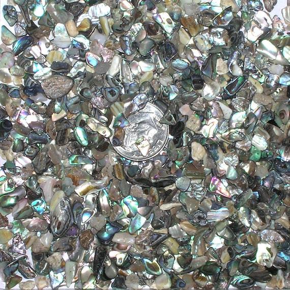 Crushed Gemstone For Inlays : Oz tumbled tiny crushed abalone gemstone chips undrilled no