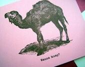 Vulgar Wanna Hump Suggestive Funny Valentine Card