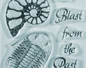 Adventure Series A Blast from the Past clear stamps with Trilobite and Ammonite