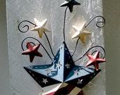 Stars for your garden