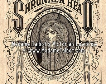 Human Shrunken Head Tsantsa Gothic Lowbrow Poster
