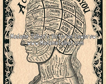 A Cure For What Ails You Phrenology Drugs Medical Apothecary Poison Poster
