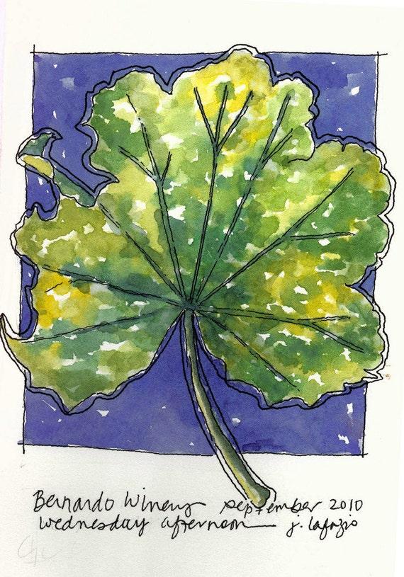 Bernardo Winery Leaf    original watercolor