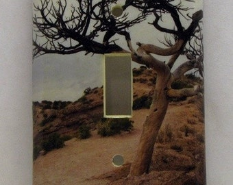Desert Solitaire - Recycled Single Switch Plate Cover, Tree, New Mexico, Tent Rocks, Dry, Brown, Photo, Southwest