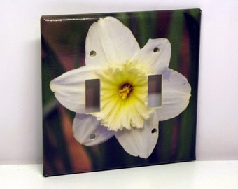 Solo Daffodil -- Recycled Double Light Switch Plate, White, Yellow, Green, Flower, Photo, Garden, Spring, Upcycled
