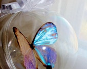"""LAST ONE Butterfly Ornament Real Blue Morpho Lympharis Butterfly 4"""" Ball Ornament  Unique Holiday Tree Ornament"""