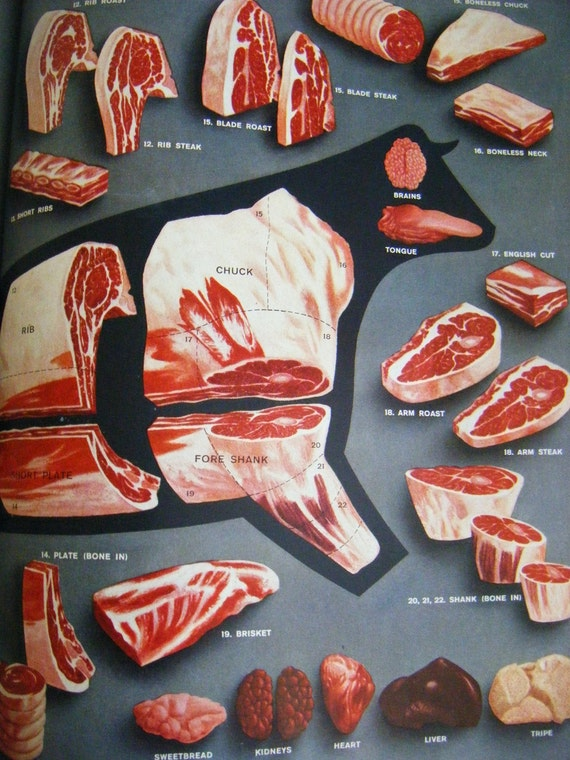 Mid Century 1958 Large Format Picture Cook Book Kitchen Reference ART