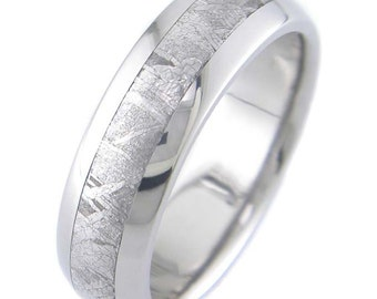 Gibeon Meteorite Inlay Titanium Ring