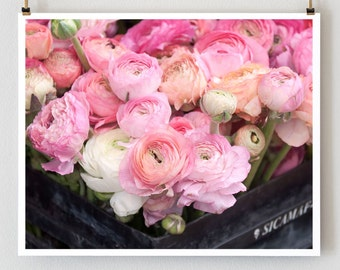 "16x20 Paris Photograph, ""Pink Ranunculus"" Paris Photo, Large Wall Art,  Paris Flowers, Floral Art"