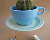 Blue Coffee Cup Planter with Green Saucer and Spoon Plant Holder