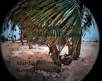 Lomo fisheye - Coco Beach - 35mm film photograph - photographic print