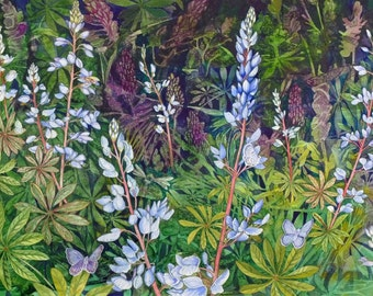 Karners Love Wild Lupine a limited edition giclee print