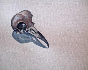 Crow Skull Study I original watercolor painting