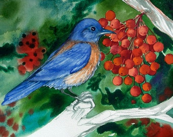 Bluebird, an original watercolor
