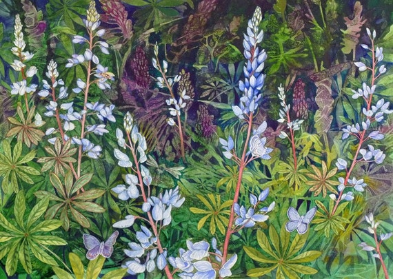Karners Love Wild Lupine a limited edition giclee print