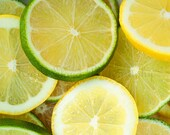 Lemons and Limes - 8x10 Fine Art Food Photography Print - Green and Yellow Citrus Slices Kitchen Home Decor Photo